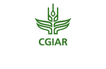 CGIAR Research Program on Grain Legumes and Dryland Cereals