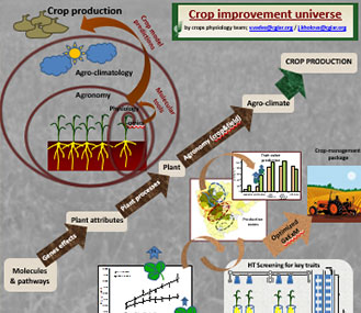 Crop improvement universe