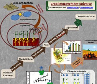 Crop improvement universe