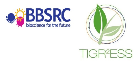 BBSRC-Bioscience for future & TIGR2ESS: Transforming India's Green Revolution by Research and Empowerment for Sustainable food Supplies